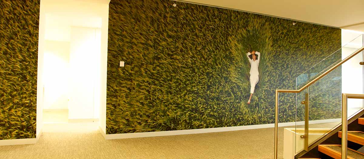 Custom Printed Ministerial Office Wallpaper Mural